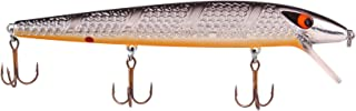 Smithwick Lures Suspending Super Rogue Fishing Lure