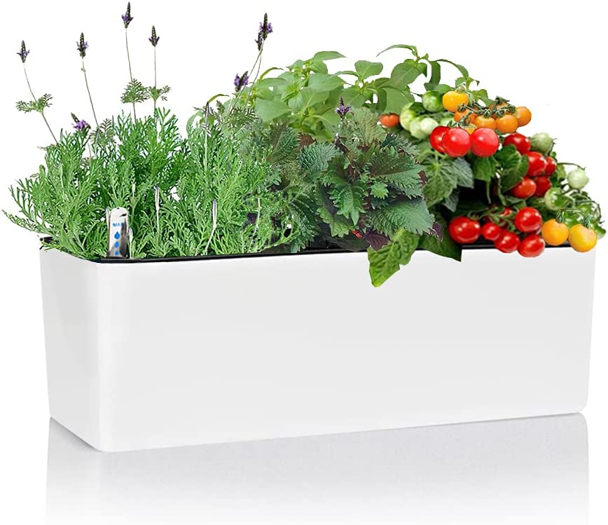 Rectangle Self Watering Plant Pot with Water Level Indicator, Window Gardening Box, Indoor Herb Garden, Modern Decorative Planter Pot, 16 x 5.5 Inch, White (Plants Not Included)