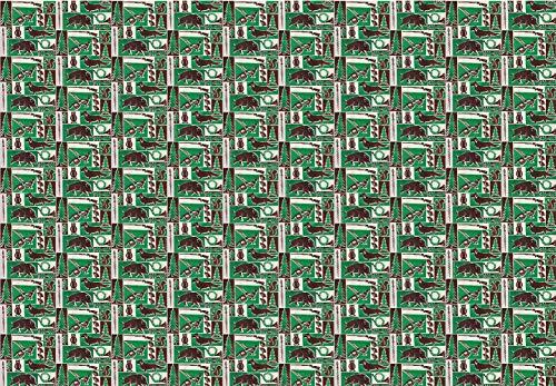 NWM Geschenkpapier Jagd Jäger 70er Jahre Stil (grün - braun, 98 x 68)
