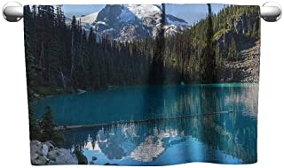 DUCKIL Personalized Hand Towels Lake House Decor Lake in Northern Canada with Slim Trees and Snowy Frozen Mountain Novelty Photo Soft Bath Towel 20 x 20 inch Blue White Green