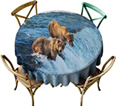Mannwarehouse Wildlife Decor Fitted Tablecloth Grizzly Bear in The Stream River Fishing Alaskan Salmon Savage Carnivore Easy Care D55 Brown Blue