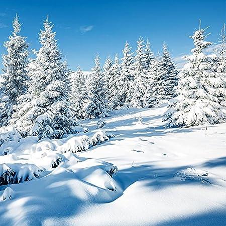 20 Servietten Natürlicher Winterwald Wald Schnee Winter Weihnachten 33x33cm Drogerie Körperpflege