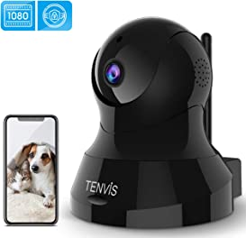 Explore indoor cameras for dogs