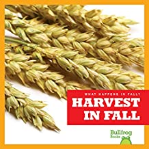 Harvest in Fall (Bullfrog Books: What Happens in Fall?)