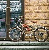 WFIZNB Bicicleta Eléctrica 500W Bicicleta Gruesa eléctrica Playa Retro Bicicleta Cruiser Bicicleta eléctrica Retro Bicicleta eléctrica clásica eléctrica 24 Inch