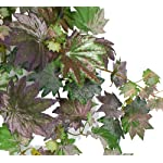 arcadia-silk-plantation-two-48-artificial-frosted-maple-ivy-hanging-bushes