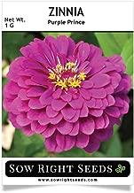 zinnia seeds for sale
