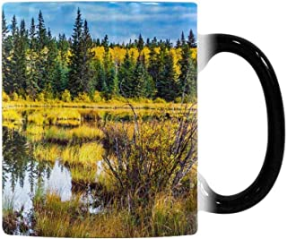 InterestPrint Fall Rocky Mountains Canada Red Deer Lake Heat Sensitive Color Changing Coffee Mug, 11oz Morphing Tea Cup for Mom Dad Best Gift for Mother'Day Father'Day Birthday