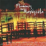 Flamenco en Mayúscula