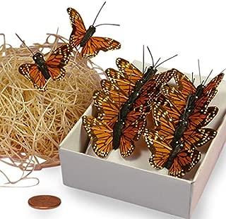 Orange Monarch Butterflies, 1-1/2