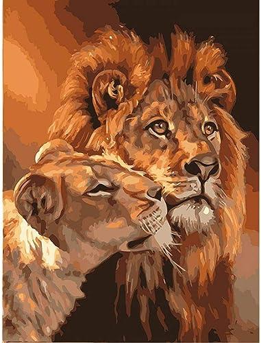 nueva marca QIAISHI Sin Marco El león Animal Pintura de Bricolaje Bricolaje Bricolaje por Kits para Colorar Pintura al óleo sobre Lienzo Dibujo Inicio Arte de Parojo Imagen de Arte  elige tu favorito