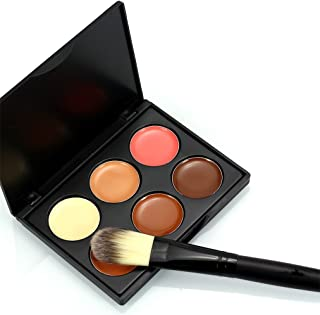 Pure Vie Pro 1 Pcs Make Up Brush + 15 Colors Cream Concealer Camouflage Makeup Palette Contouring Kit for Salon and Daily Use