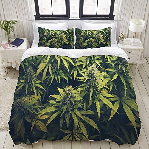 ALLMILL Bedding Juego de Funda de Edredón,Green Weed Cannabis Bud Marihuana Plantas Marijuana Sativa Hemp Indica Grow Farm,Microfibra Funda de Nórdico y Fundas de Almohada - 200 x 200cm