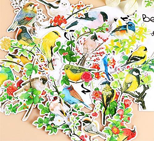 WYDML Pájaro y Fruta Cuenta de Mano Taza de Agua portátil Casco de Guitarra Pegatina Decorativa Pegatina Impermeable 20 Piezas