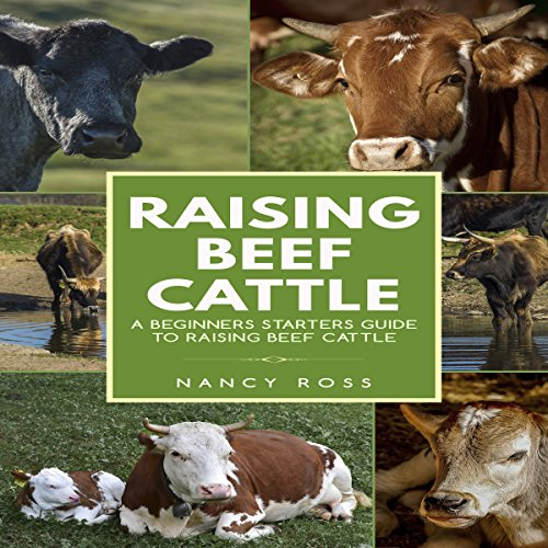 Raising Beef Cattle: A Beginner's Starters Guide to Raising Beef Cattle audiobook cover art