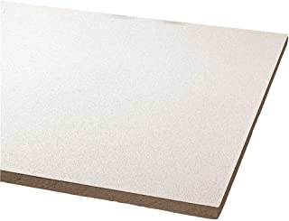 Armstrong World Industries BPGR870 Acoustical Ceiling Panel 870 Clean Room Vl Unperforated Humiguard Plus (8 per Case), 24
