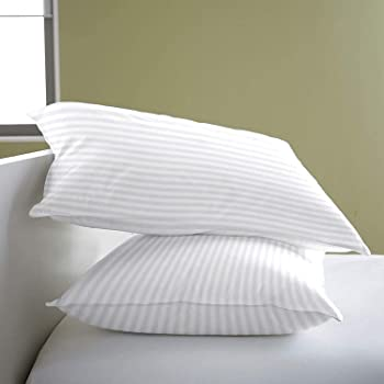 Cloth Fusion Cloudix Bed Pillow Set of 2 for Sleeping - 16 x 24 Inch, White