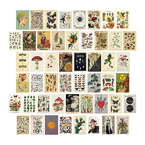 Exnemel 50 Piezas Collage de Pared, Kit de Collage para Pared Estética de Navidad Decoración de Habitación Dormitorio Aesthetic Wall Posters (Multi-Plant)