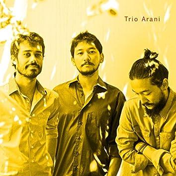 Trio Arani