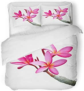 Adowyee Duvet Cover Set Queen/Full Size Pink Bali Plumeria Flowers White Purple Exotic Frangipani Hawaii Decorative 3 Piece Bedding Set with 2 Pillow Shams for Bedroom