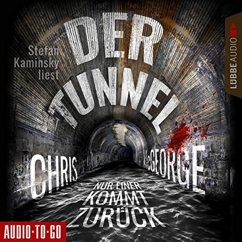 Der Tunnel audiobook cover art