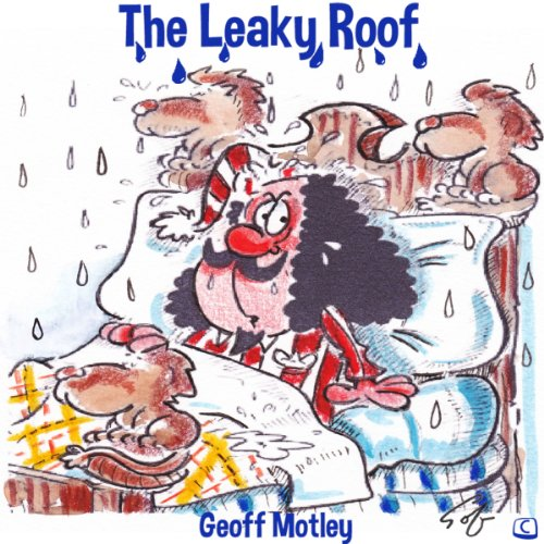 The Leaky Roof cover art