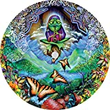 TIRE COVER CENTRAL Musical Frog & Butterfly Spare Tire Cover (Select tire Size/Back up Camera Option in menu) Custom Sizes for Any Make Model(245/75r17 Centered Camera)