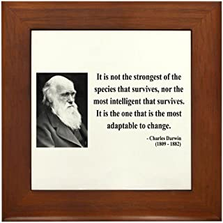 CafePress - Charles Darwin 6 Framed Tile - Framed Tile, Decorative Tile Wall Hanging