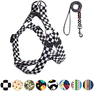 QQPETS Cute Durable Step-in Anti-Breakaway Dog Harness and Leash Set Soft Nylon Adjustable Dog Harness for Small Medium Large Puppy Breed Girl Boy Walking Training Running Beautiful Unique Pattern