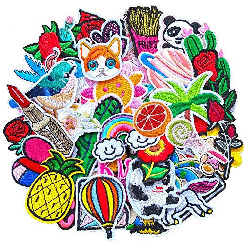 Qingxi Charm 48pcs Random Assorted Styles Sewing on/Iron on Embroidered Patches Clothes Dress Hat Pants Shoes Curtain Sewing Decorating DIY Craft Embarrassment Applique Patches (Assorted 48pcs)