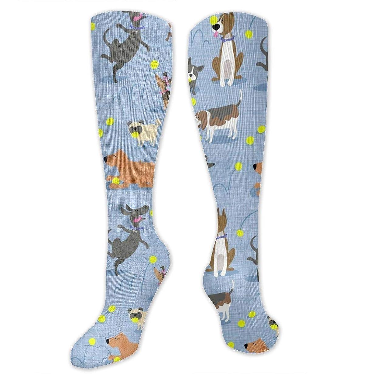 ガード療法代数靴下,ストッキング,野生のジョーカー,実際,秋の本質,冬必須,サマーウェア&RBXAA Tennis Dogs Socks Women's Winter Cotton Long Tube Socks Cotton Solid & Patterned Dress Socks