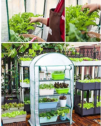 Plantas Mini Kit De Invernadero-Invernadero De Plantas Portátil De Pie,Tienda De Campaña Portátil con Cubierta (Size : 69x49x125cm)