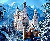 ダイヤモンド塗装 風景の新しい雪景色DIYクリスタルフルドリルスクエア5Dダイヤモンド絵画クロスステッチキットモザイクラウンドラインストーン (Color : Snow 13, Size : 30 40cm Square drill)
