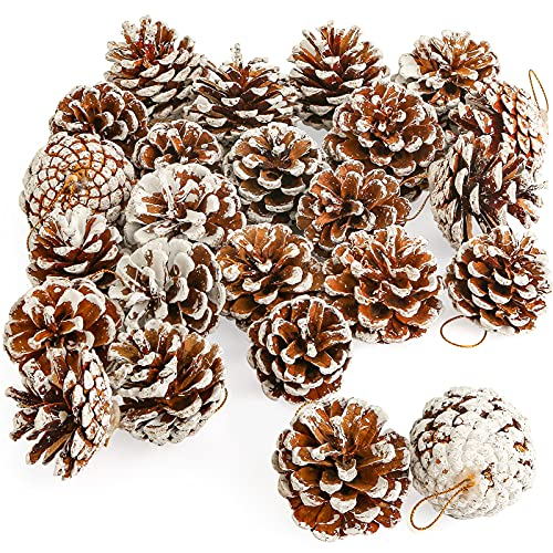 JOHOUSE 24PCS White Pine Cones, Snow PineCones Christmas Pine Cones Natural Pine Cones for Autumn and Winter Decor Christmas Decorations