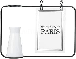 NATFUR Geometric Metal Wire Vase Rack Hydroponics Plant Holder Desktop Flower Display | Color - Black