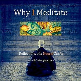 Why I Meditate audiobook cover art