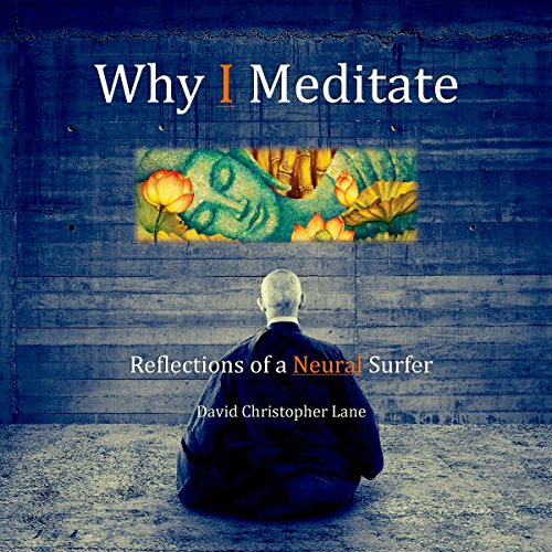 Why I Meditate audiobook cover art