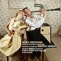 Seiber: More Nonsense