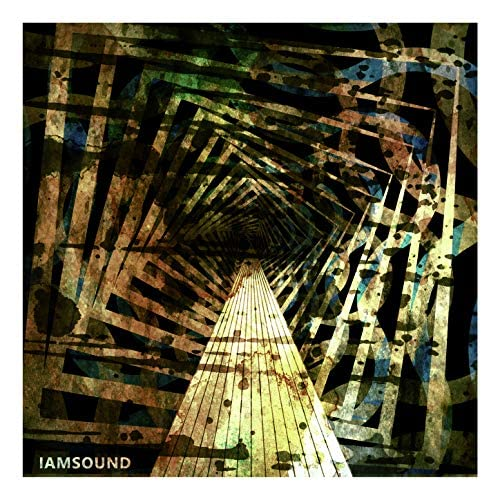 IAMSOUND feat. Shaun Bartlett