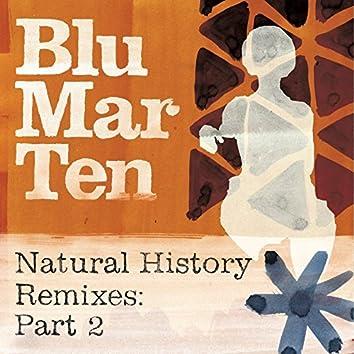 Natural History Remixes, Pt. 2