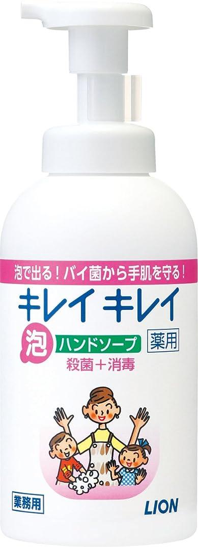 コンサルタントランドマーク忌み嫌うキレイキレイ 薬用泡ハンドソープ 550ml