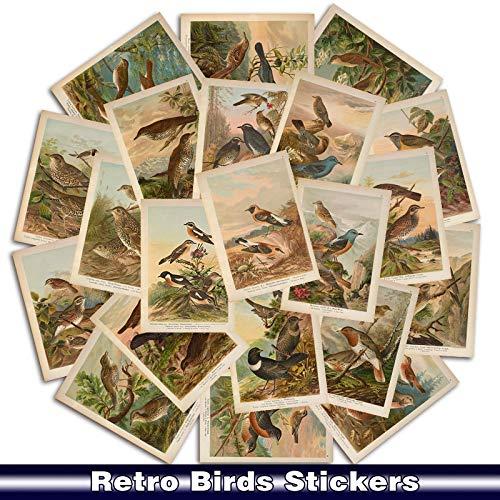 Retro Birds Animal Sticker voor mobiele telefoon auto motorfiets laptop bagage fiets skateboard koelbox telefoon Toy stickers 25 stuks/verpakking