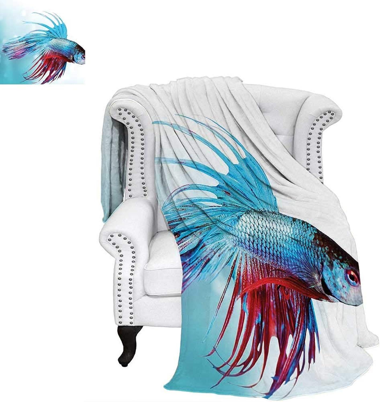 Aquariumsmall blanketSiamese Fighting Betta Fish Swimming in Aquarium Aggressive Sea Animalthin Blanket 60 x50  Sky bluee Dark Coral