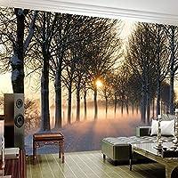 カスタム壁画壁紙3D森林風景壁画リビングルームテレビソファベッドルーム家の装飾防水ポスター, 150cm×105cm