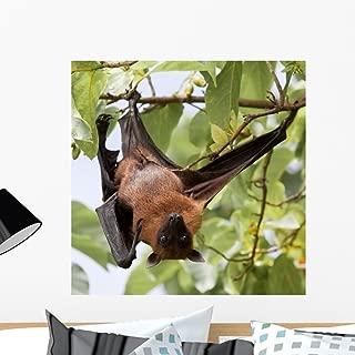 Wallmonkeys Flughund Flying Fox Fruit Bat Wall Decal Peel and Stick Graphic WM63186 (24 in H x 24 in W)