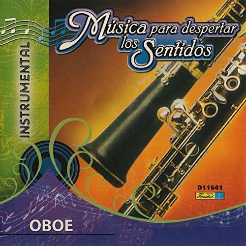Juan Fernando Muñoz feat. La Orquesta Melodía