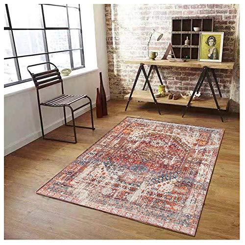 DDIAN Alfombra Salón con Aspecto Desgastado Vintage Tamaño180x280cm 200X300cm Colormulticolor,160x230cm