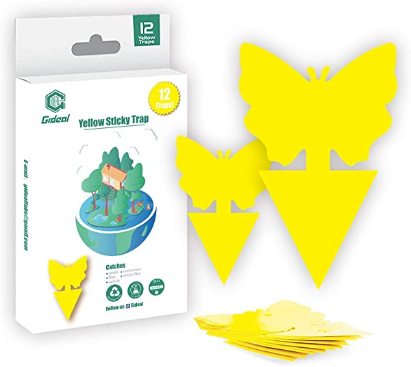 Gideal 12 Pack Dual Sided Yellow Sticky Traps For Indoor Outdoor Use Gnat Trap For Flying Plant Insect Such As Fungus Gnats Whiteflies Aphids Fruit Fly Leafminers Etc Garden Butterfly Shape