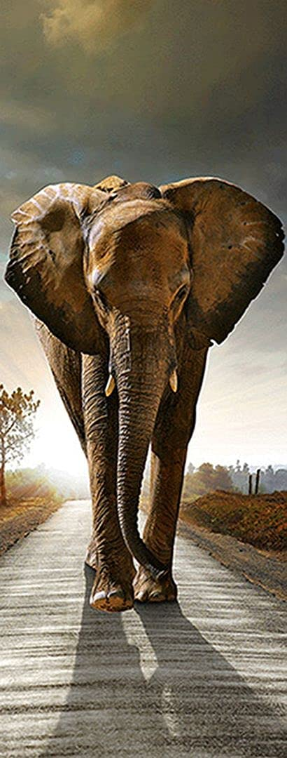 ChezMax Elephant Shipping Beauty products included 3D Animal Self-Adhesive Door Mural Sticker
