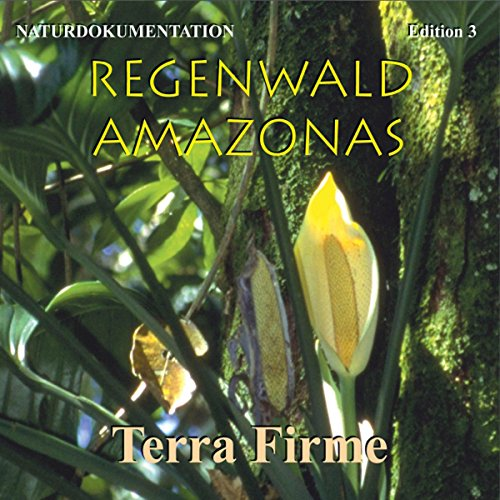 Terra Firme: Im Reich der Baumriesen (Regenwald Amazonas 3) Titelbild
